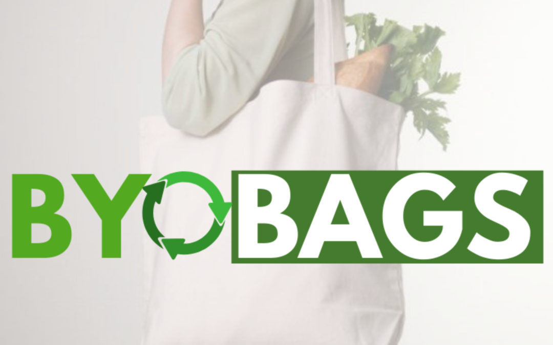 Reusable Grocery Totes: Why You Need to Make The Switch